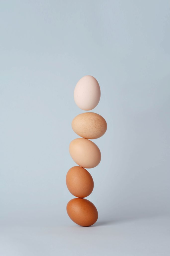 Eggs, used to make egg protein powder